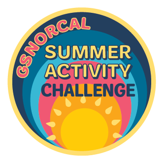 summer-activity-challenge-patch