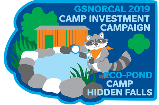 Camp Investment Patch 2018